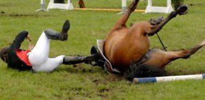Ongeluk met paard? Nostimos helpt!
